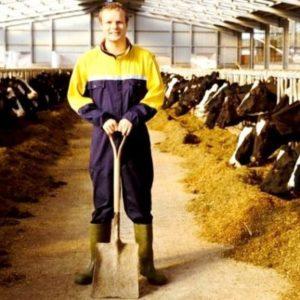 Робота на молочних фермах