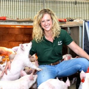 Робота на свинофермах