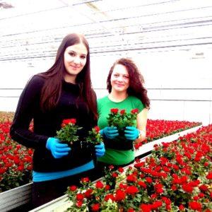 Робота у квiтково-овочевих господарствах